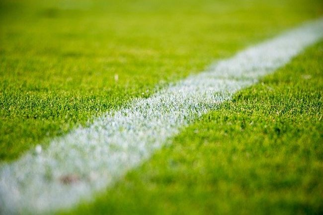 Shows a white line painted onto a grass playing field